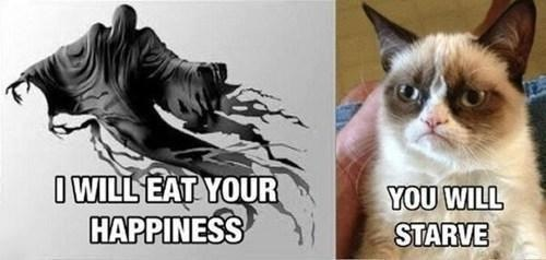 Grumy Cat Dementor